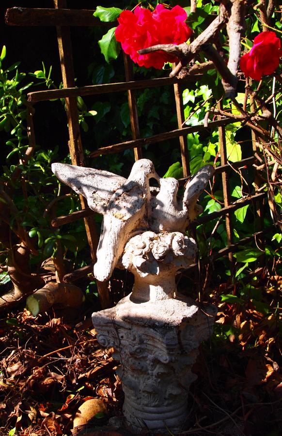 lovebirdsandpedestal